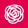 In Nome della Rosa